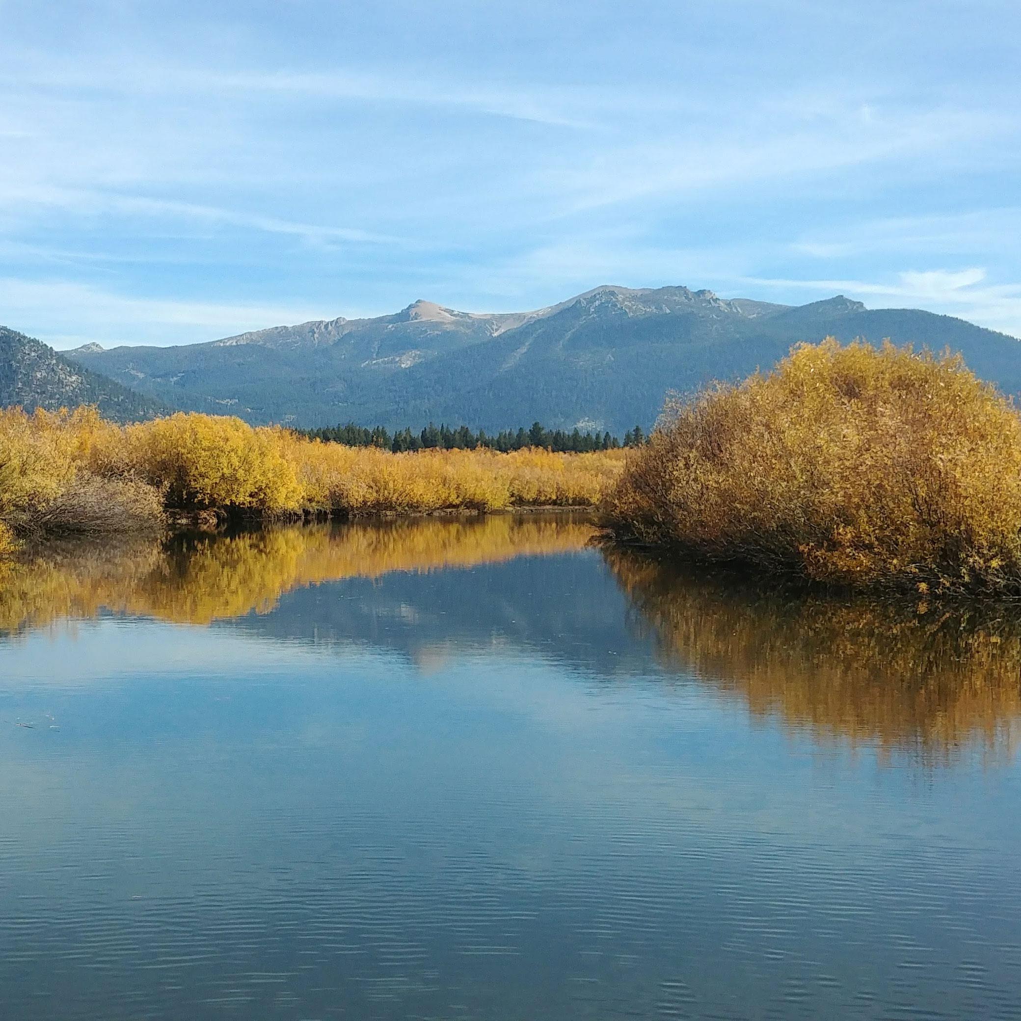 upper truckee marsh
